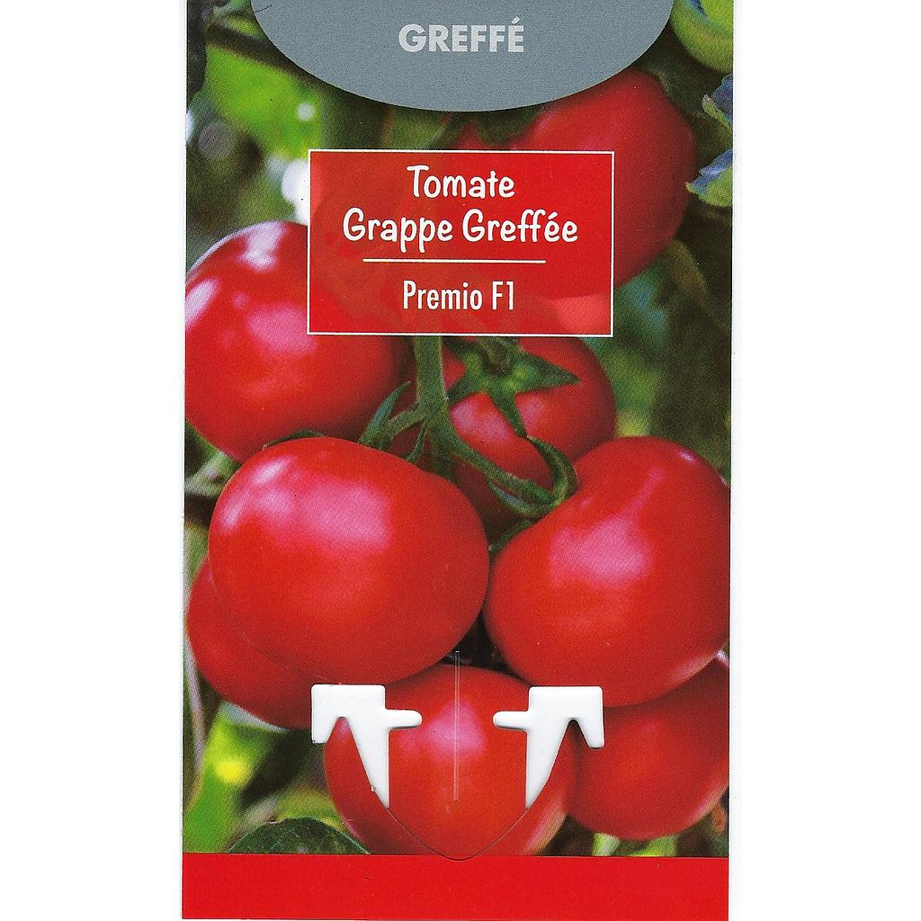 Tomates Grappe Greffée